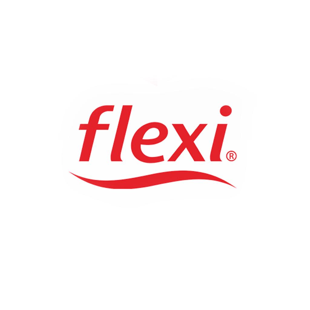 """Fabricante de calzado """"Flexi"""",en la ciudad de León Guanajuato México"""